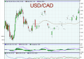 "Goldman Reveals ""Top Trade"" #3 For 2014 – Tom Stolper Goes Long The USDCAD"